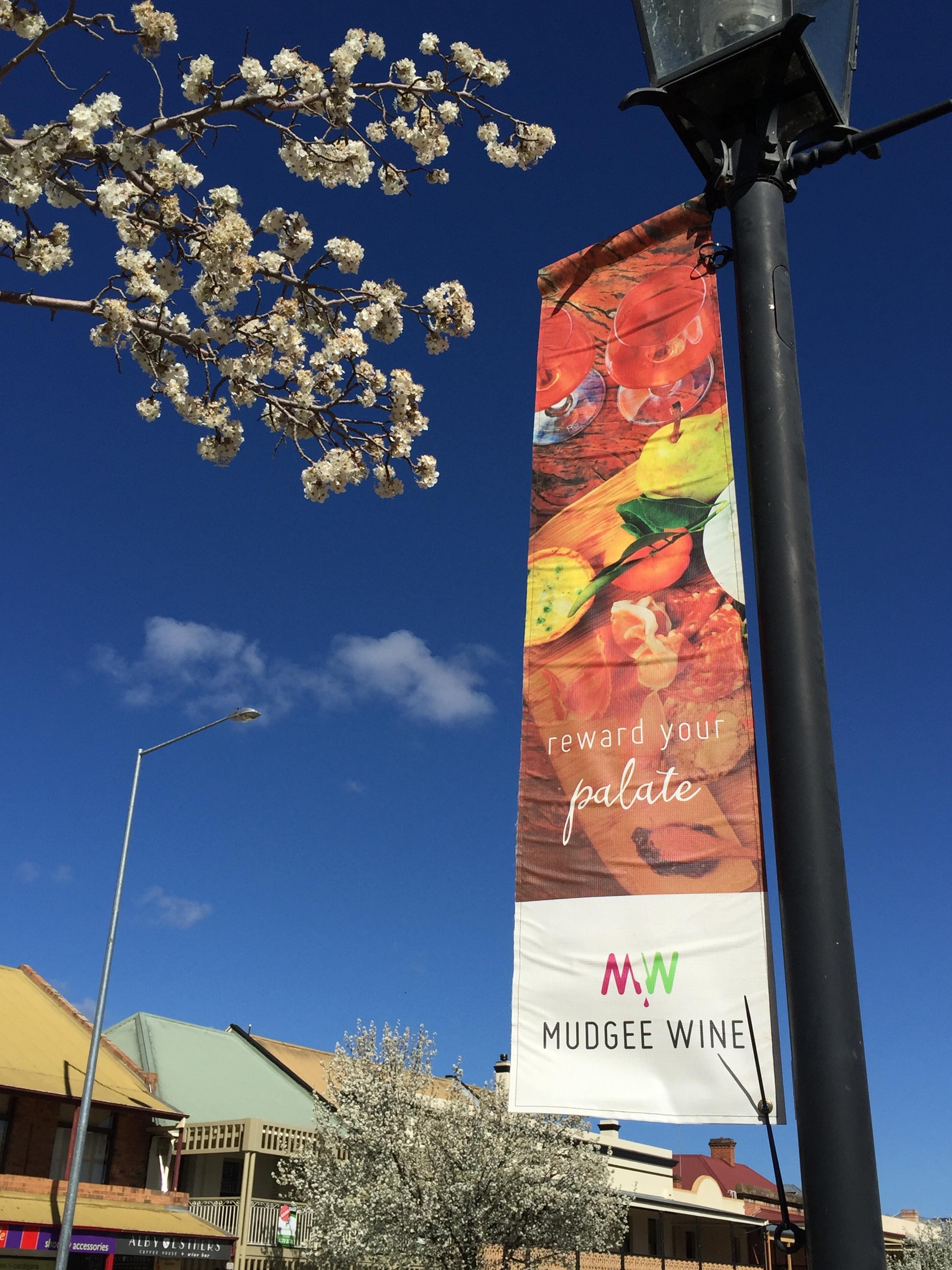 Mudgee Wine & Food Festival 2017