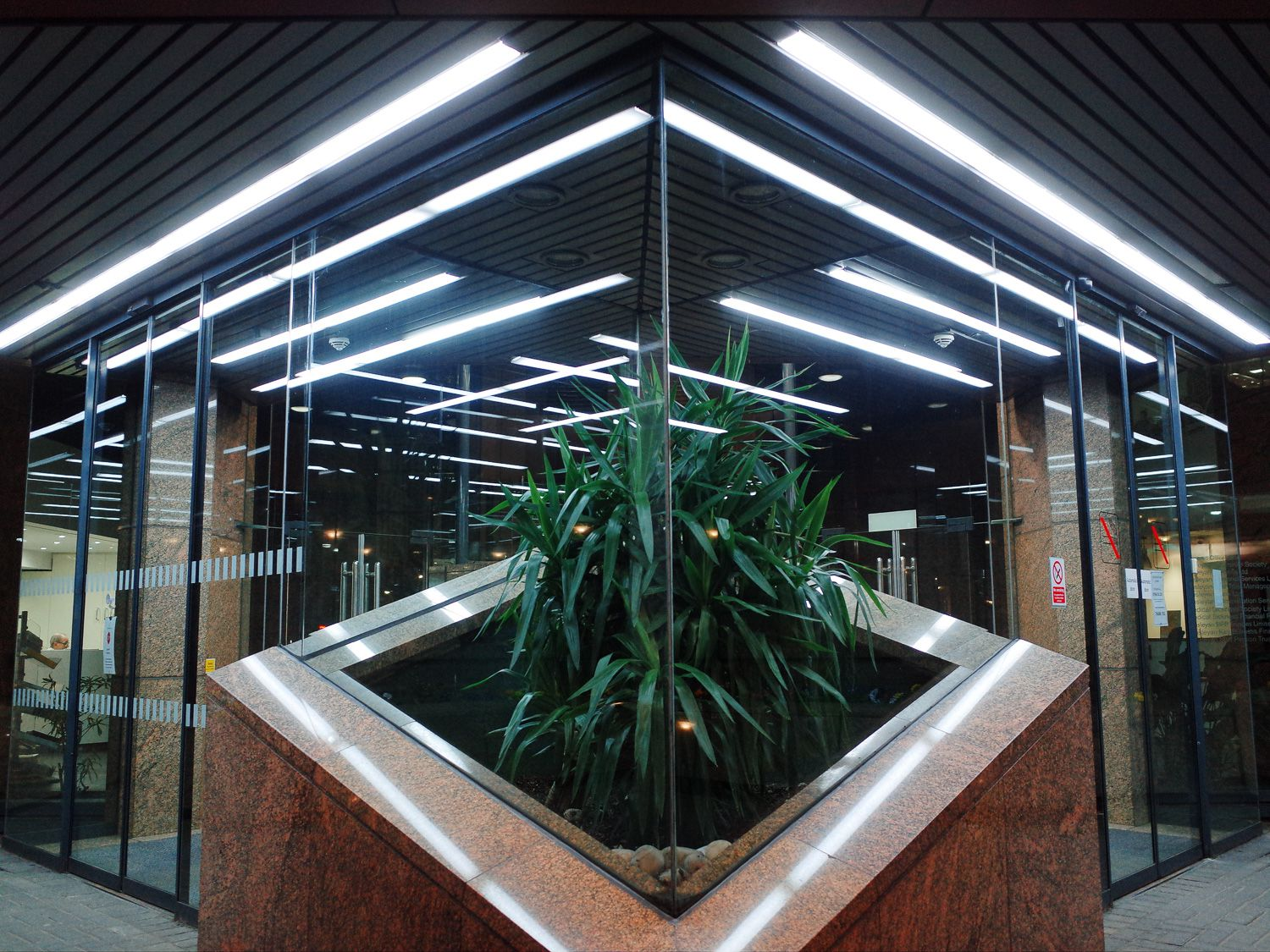 Plant-in-foyer-of-business-building-R0047727_Copyright-Ant_Tran.jpg