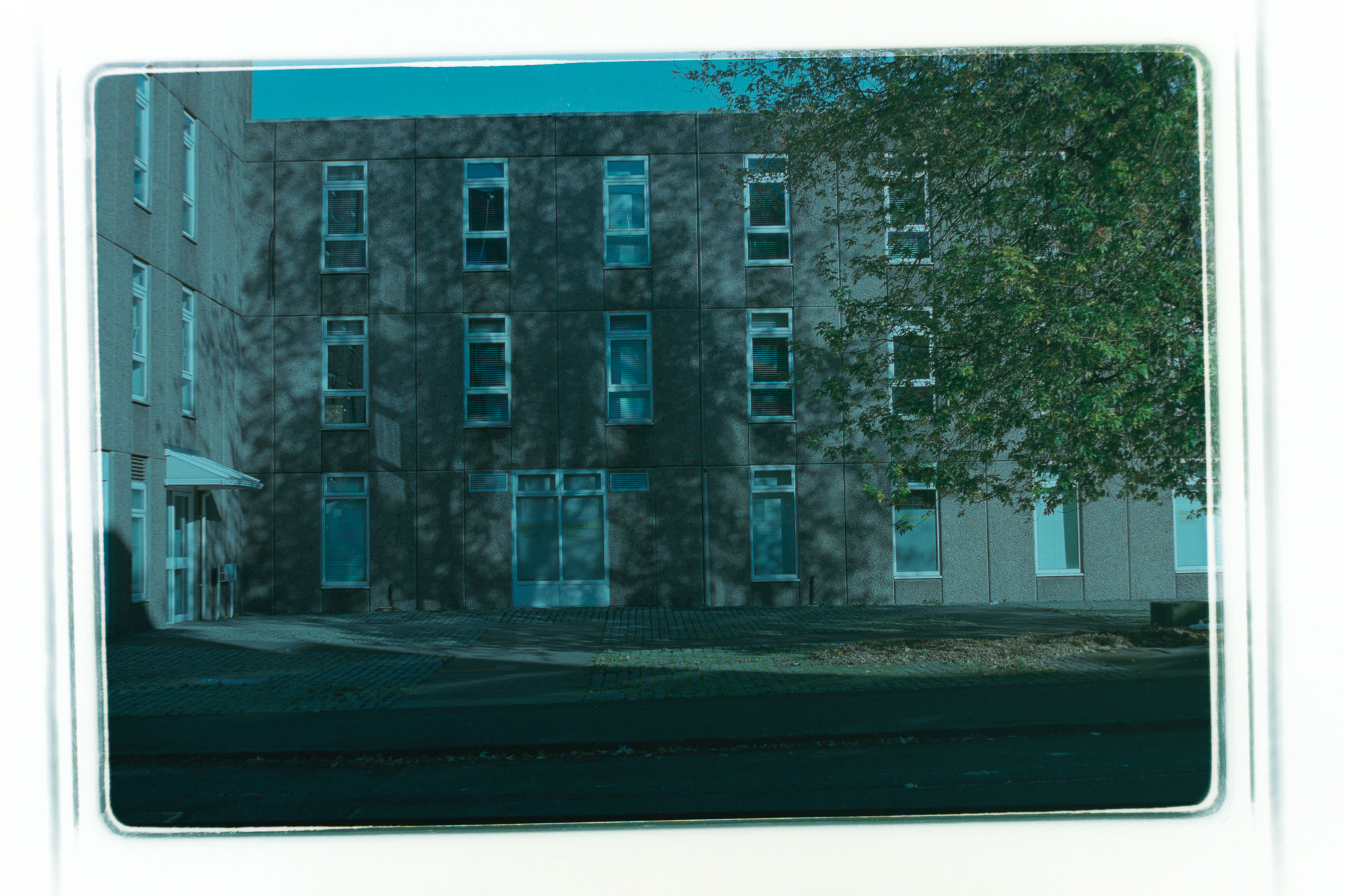 The digital negative inverted to create a positive image which has a strong cyan colour cast.