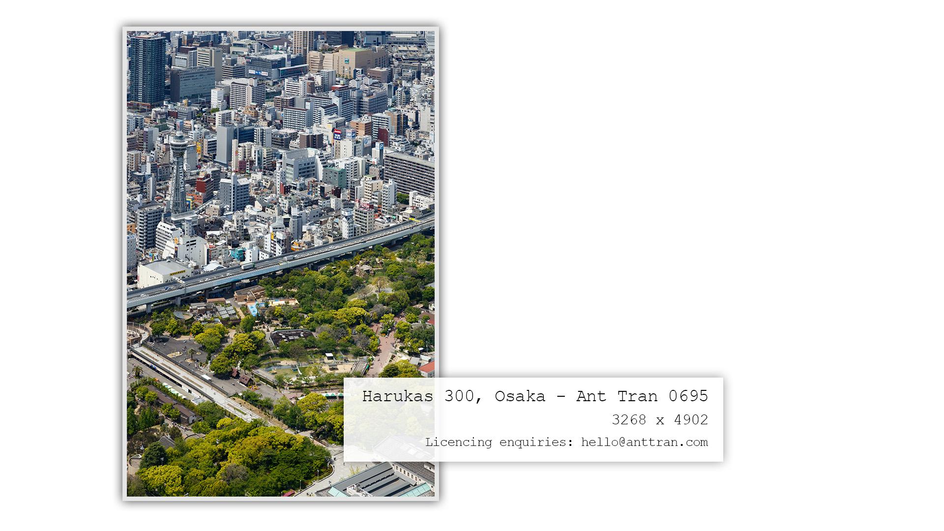 Harukas 300 MarketingArtboard 4-AntTran.jpg