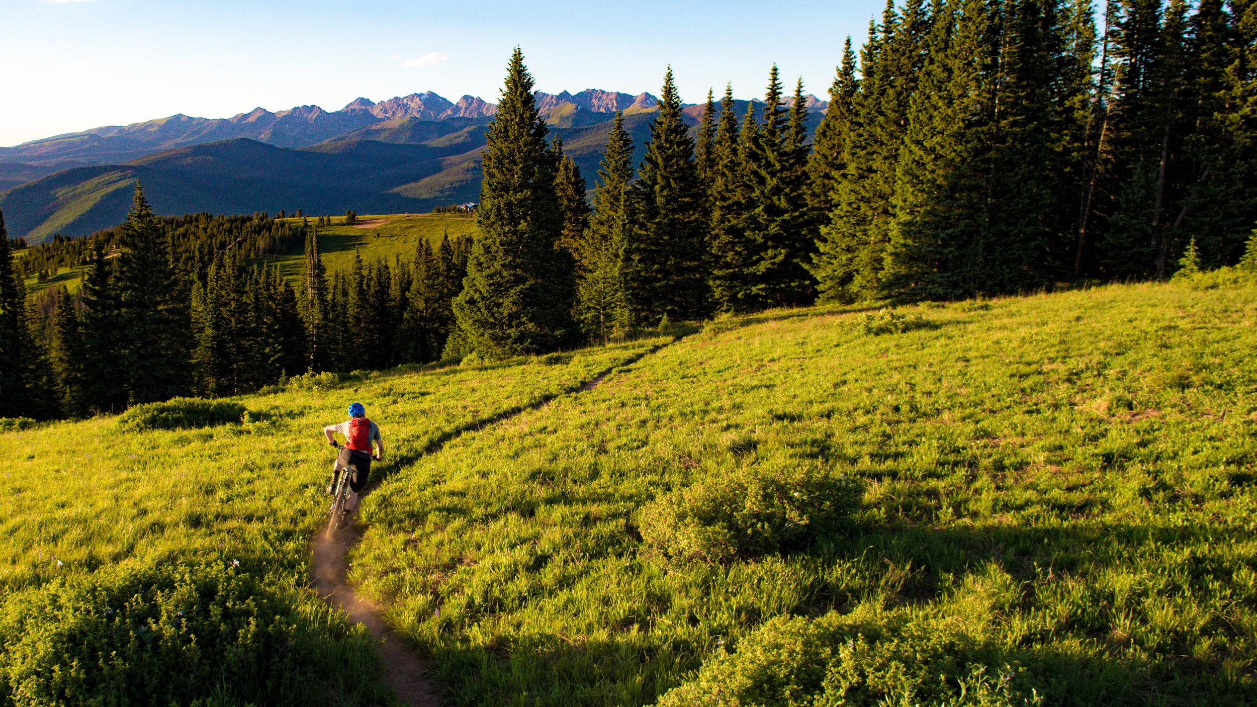 Vail_Mountain_Biking_P_Jack_Affleck0006.jpg
