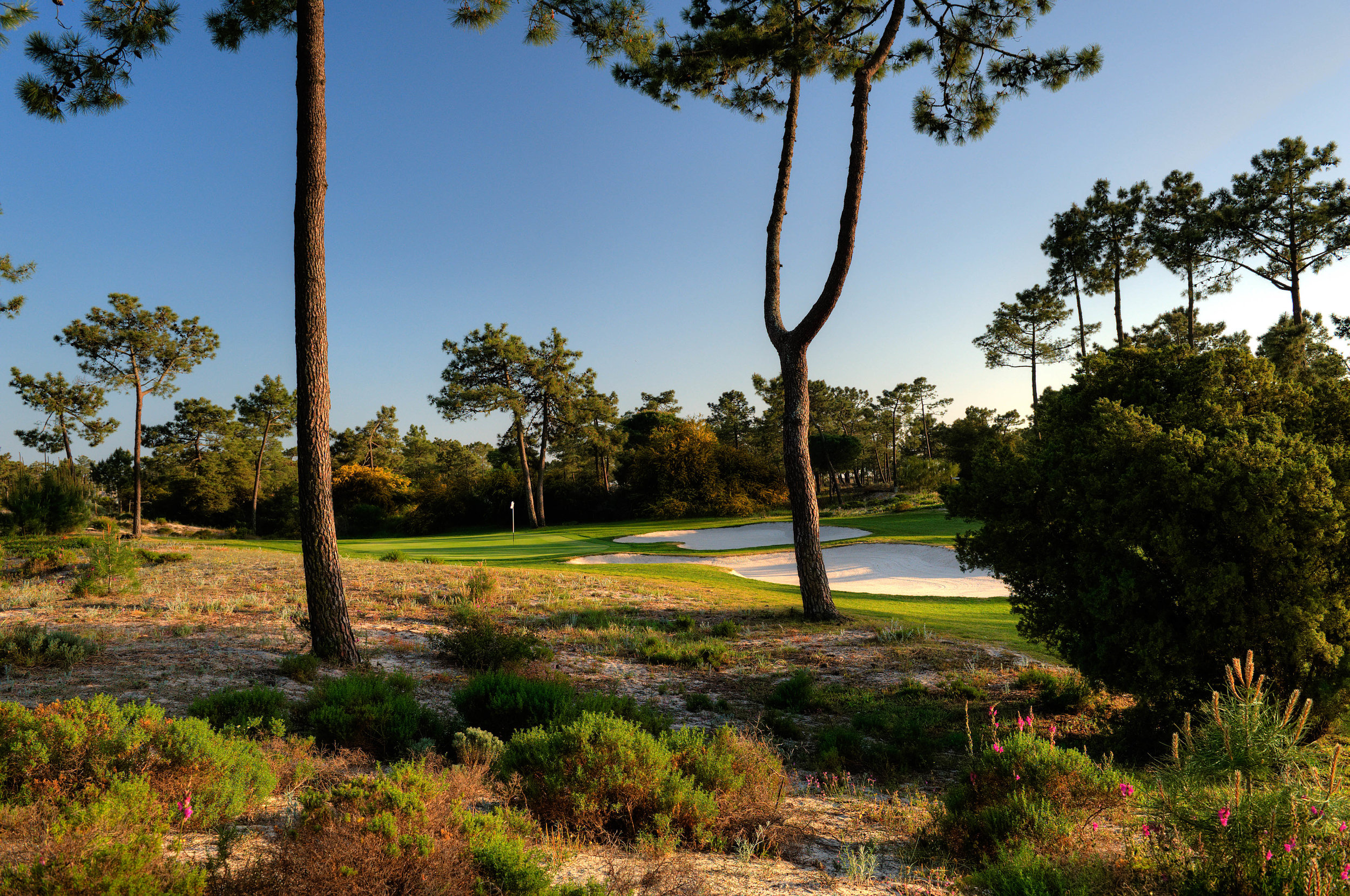 Tróia Golf Links is an oasis of delight in one of the most naturally beautiful parts of Portugal