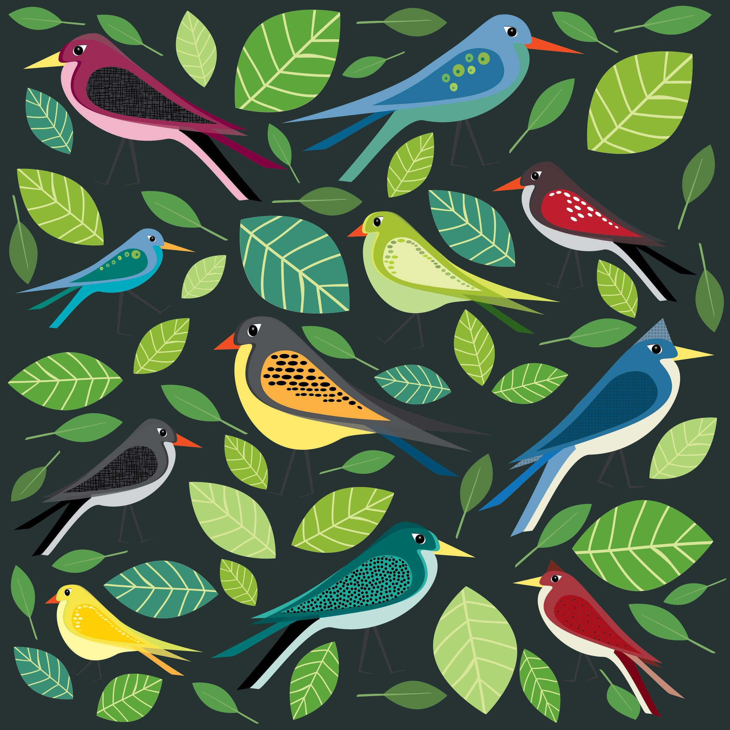 birds-02.jpg