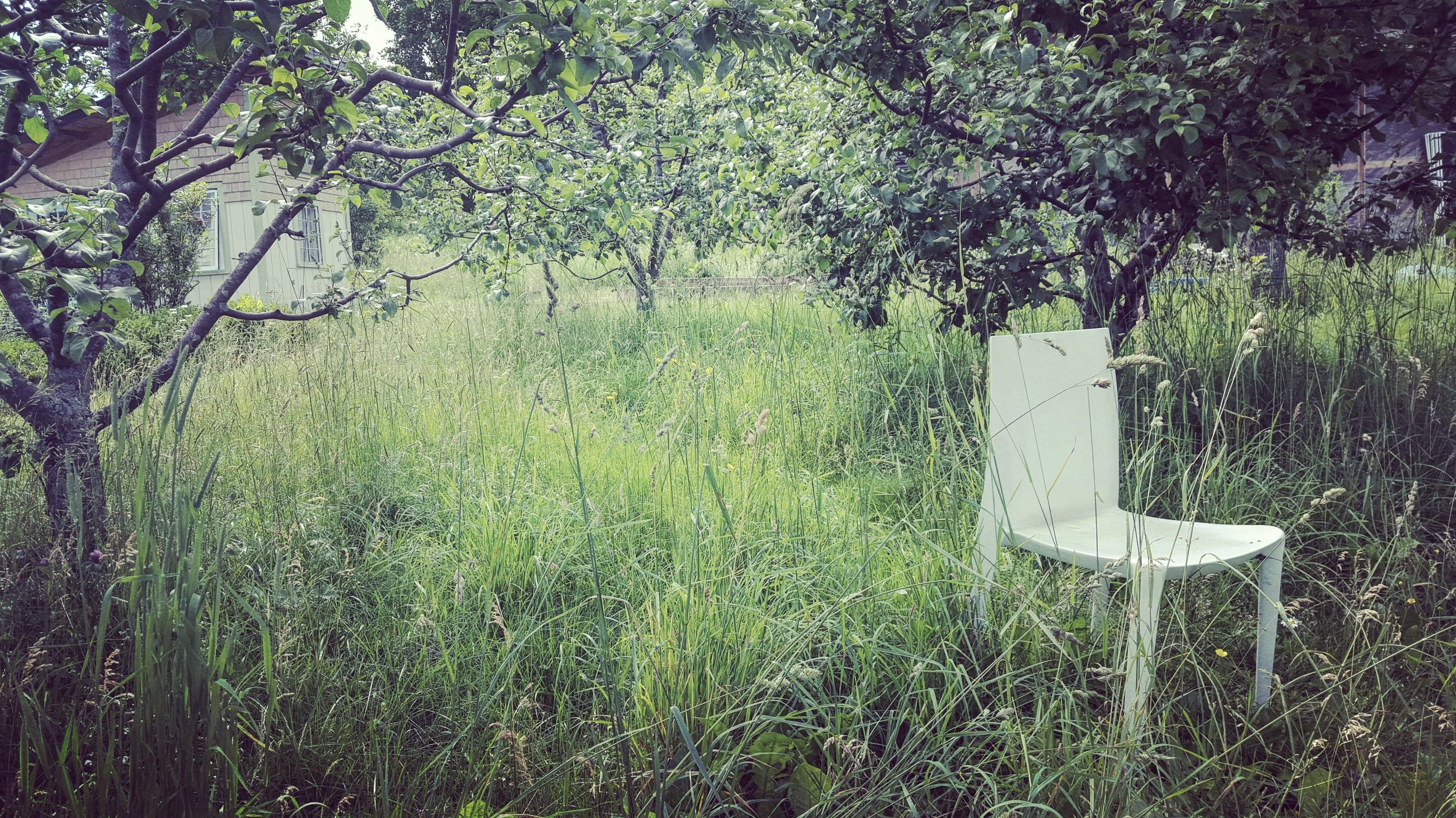 quiet orchard chair.jpg