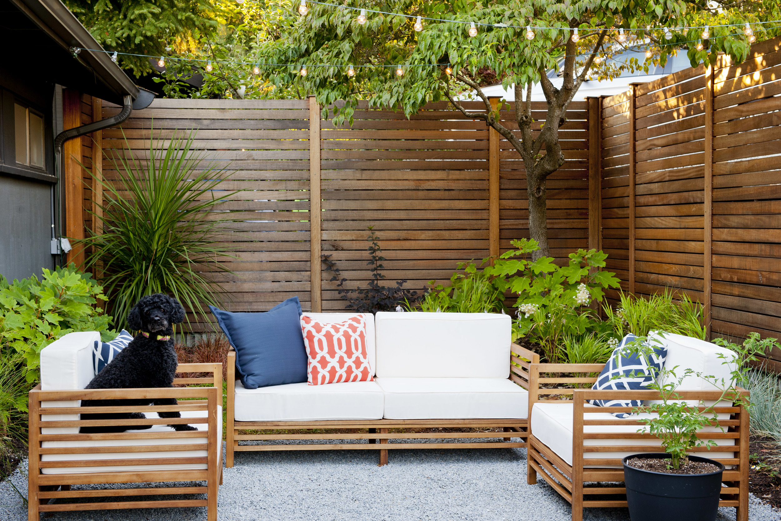Mid Century Seattle Courtyard Remodel Project Groundwork