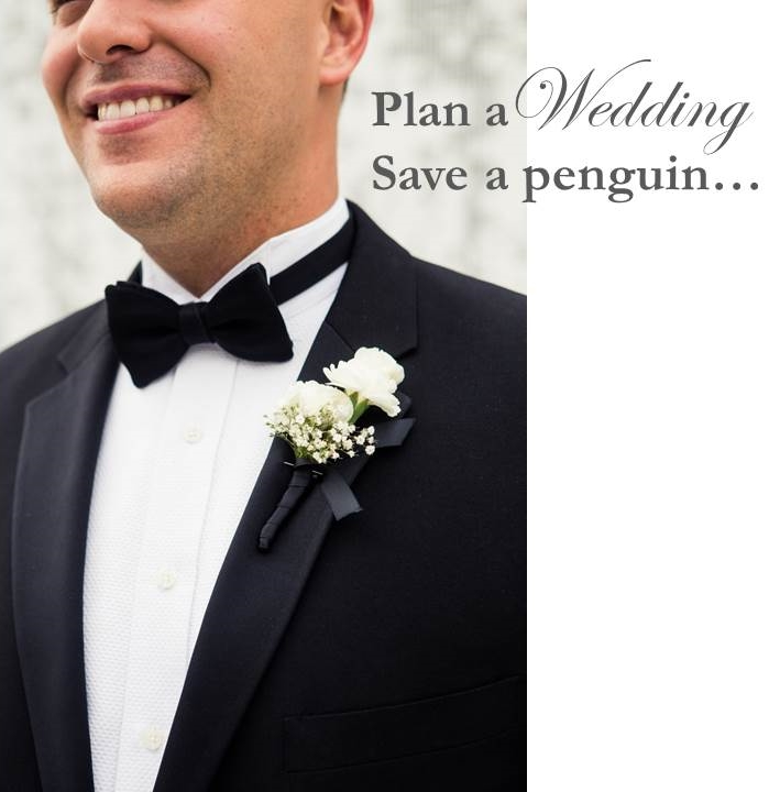 Plan a Wedding Save a Penguin