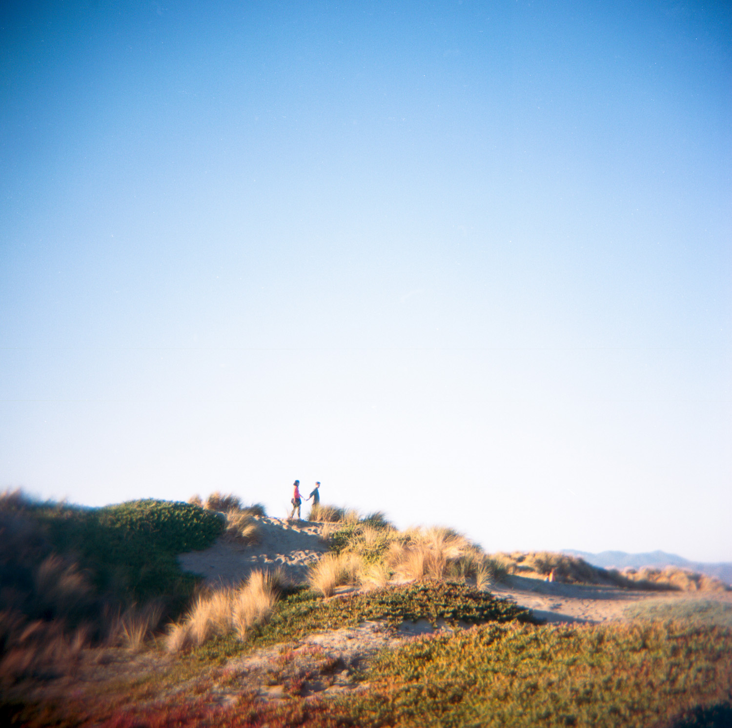 Engagement photo of couple on the dunes of Ocean beach in San Francisco