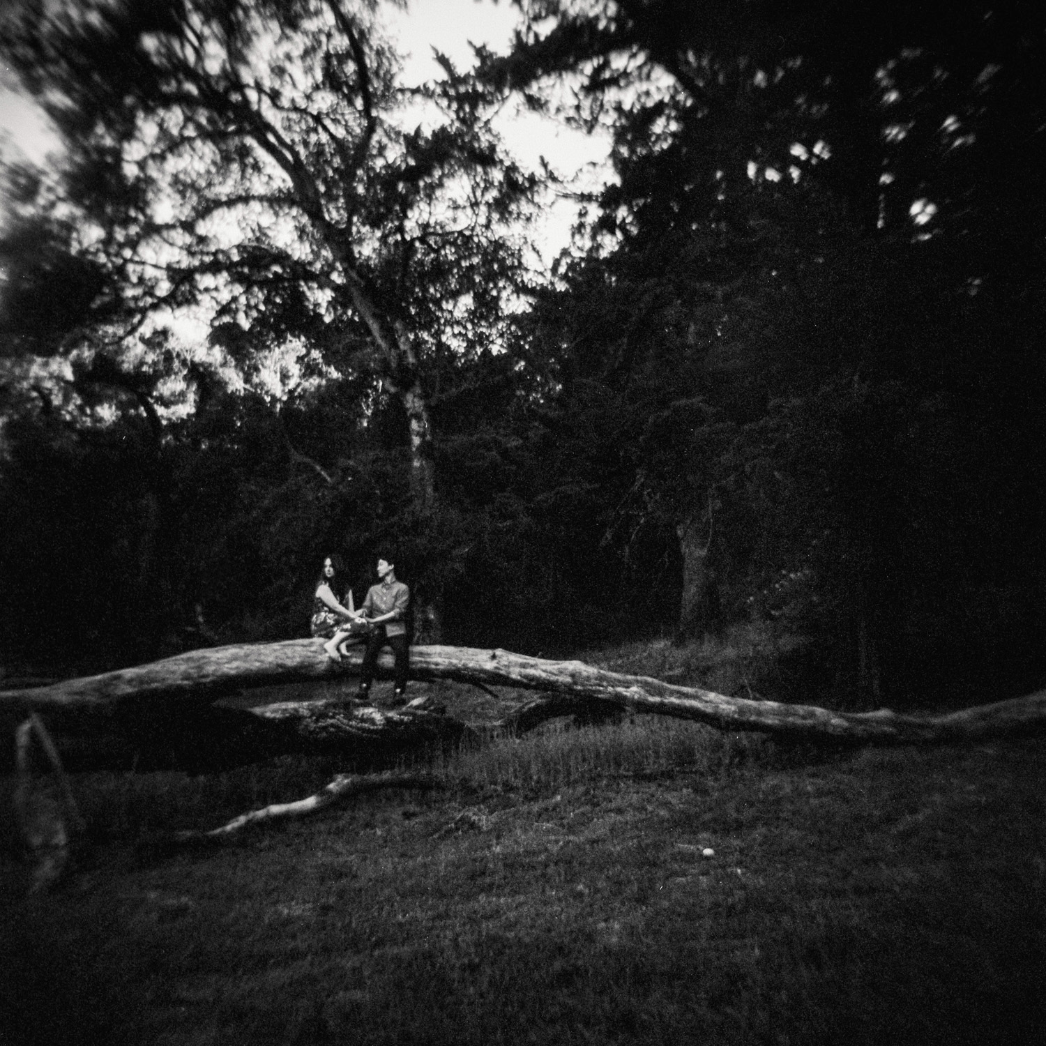 engagement photo in nature couple sits on fallen tree in forest shot on black and white film