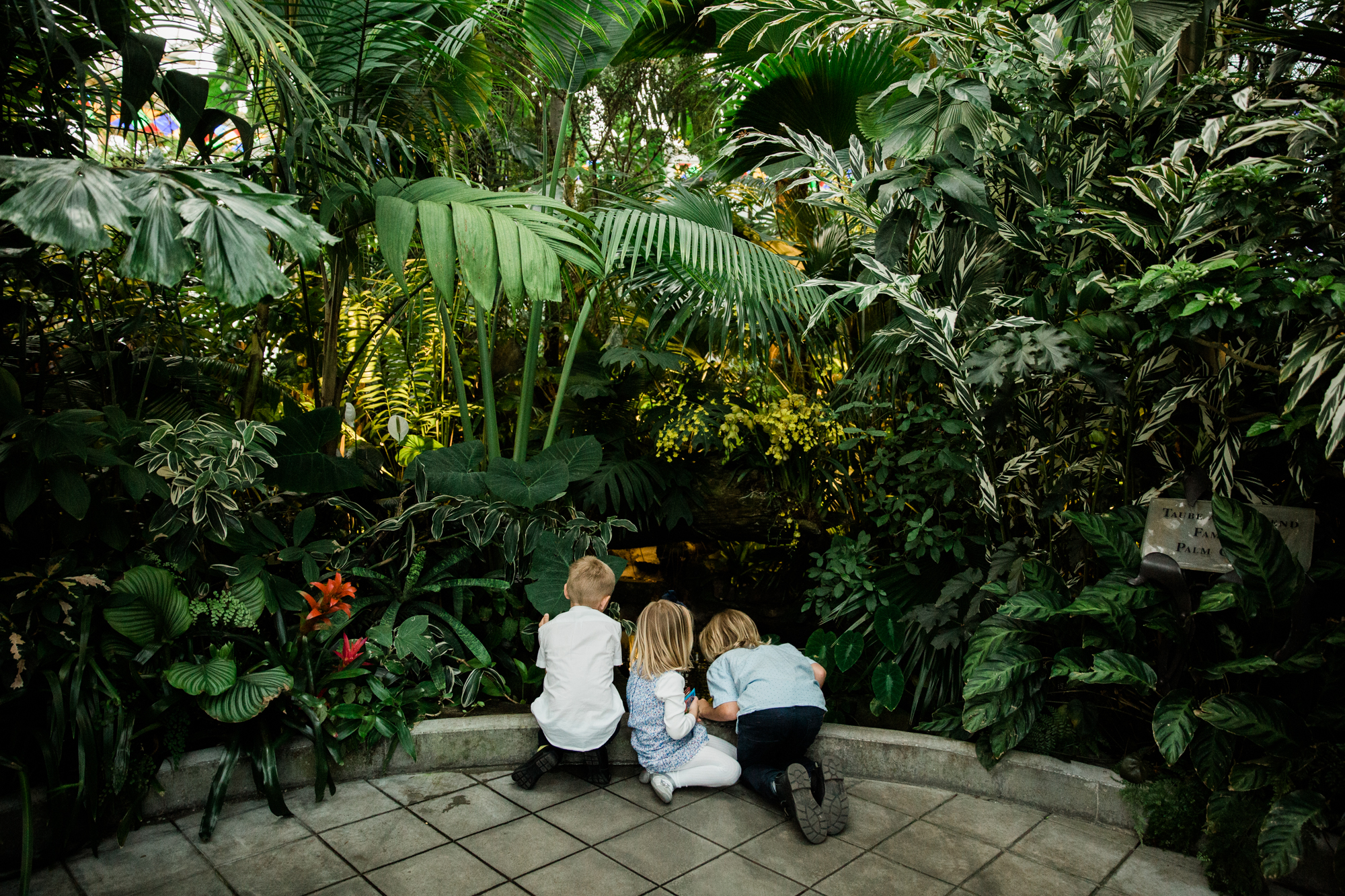 Conservatory_of_Flowers_San_Francisco_Wedding_039.jpg