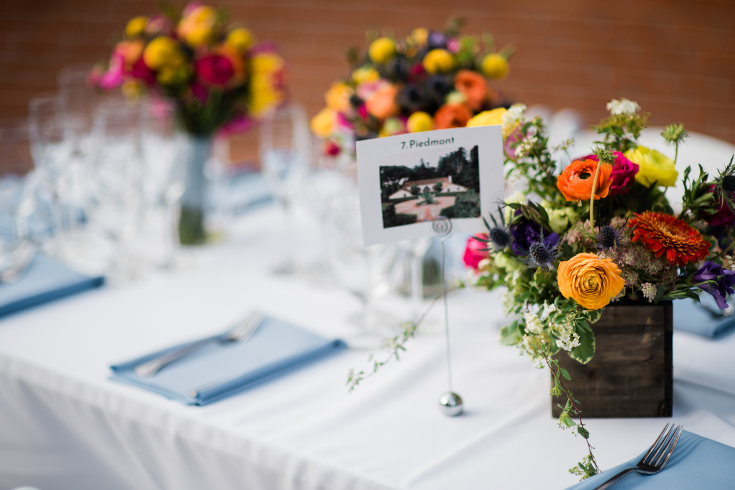 Spring_Piedmont_Community_Hall_Wedding_033.jpg