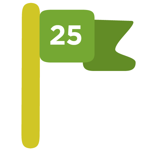 NTF-website-25-icon.png