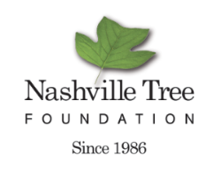 nashville tree foundation