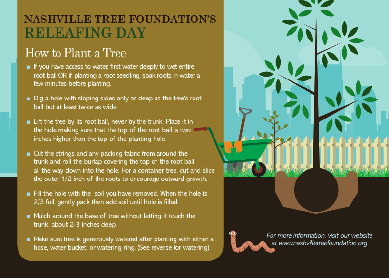 How to plant a tree - free download