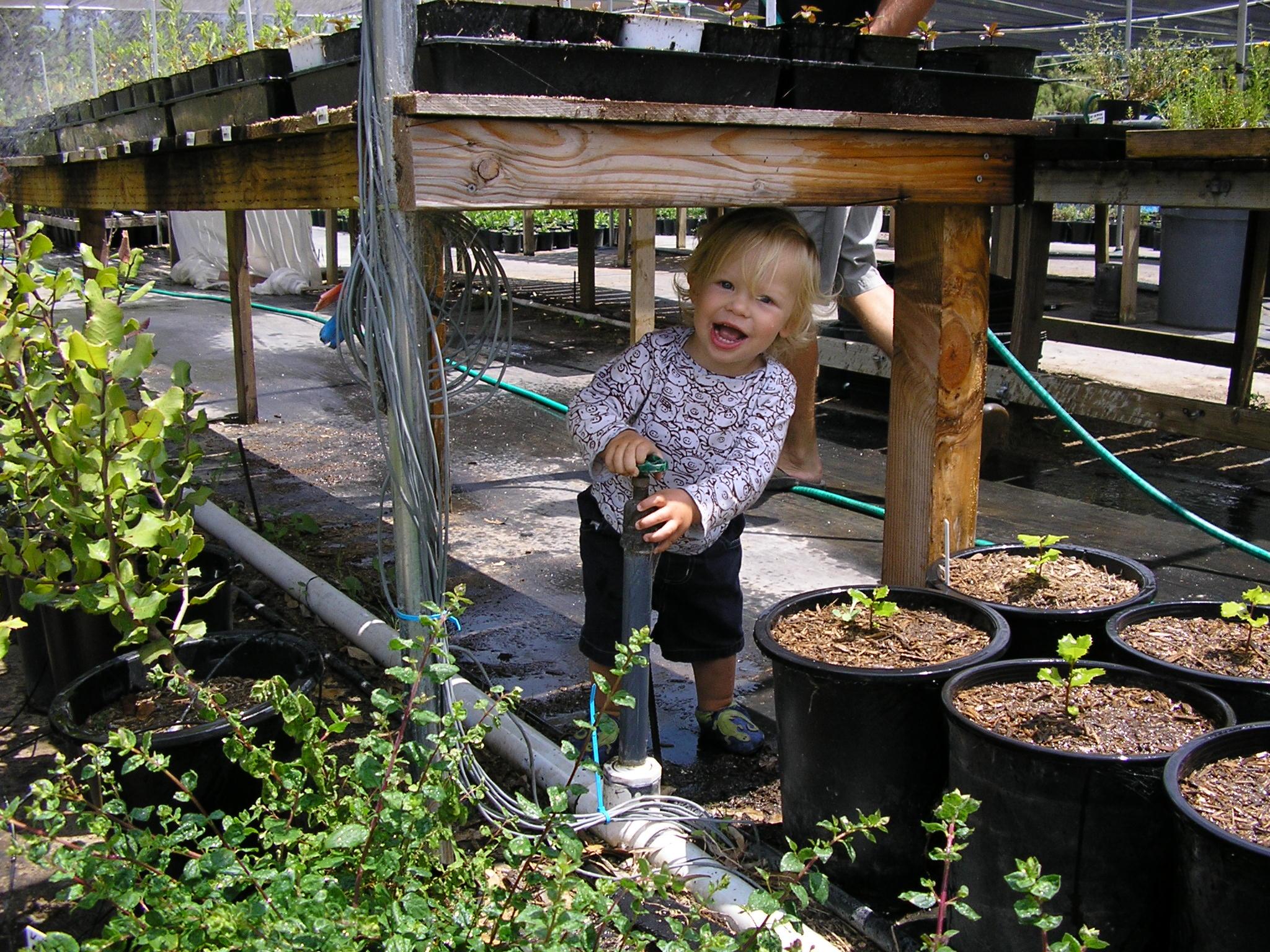 june 26.05 014 Lucas and oak seedling.jpg