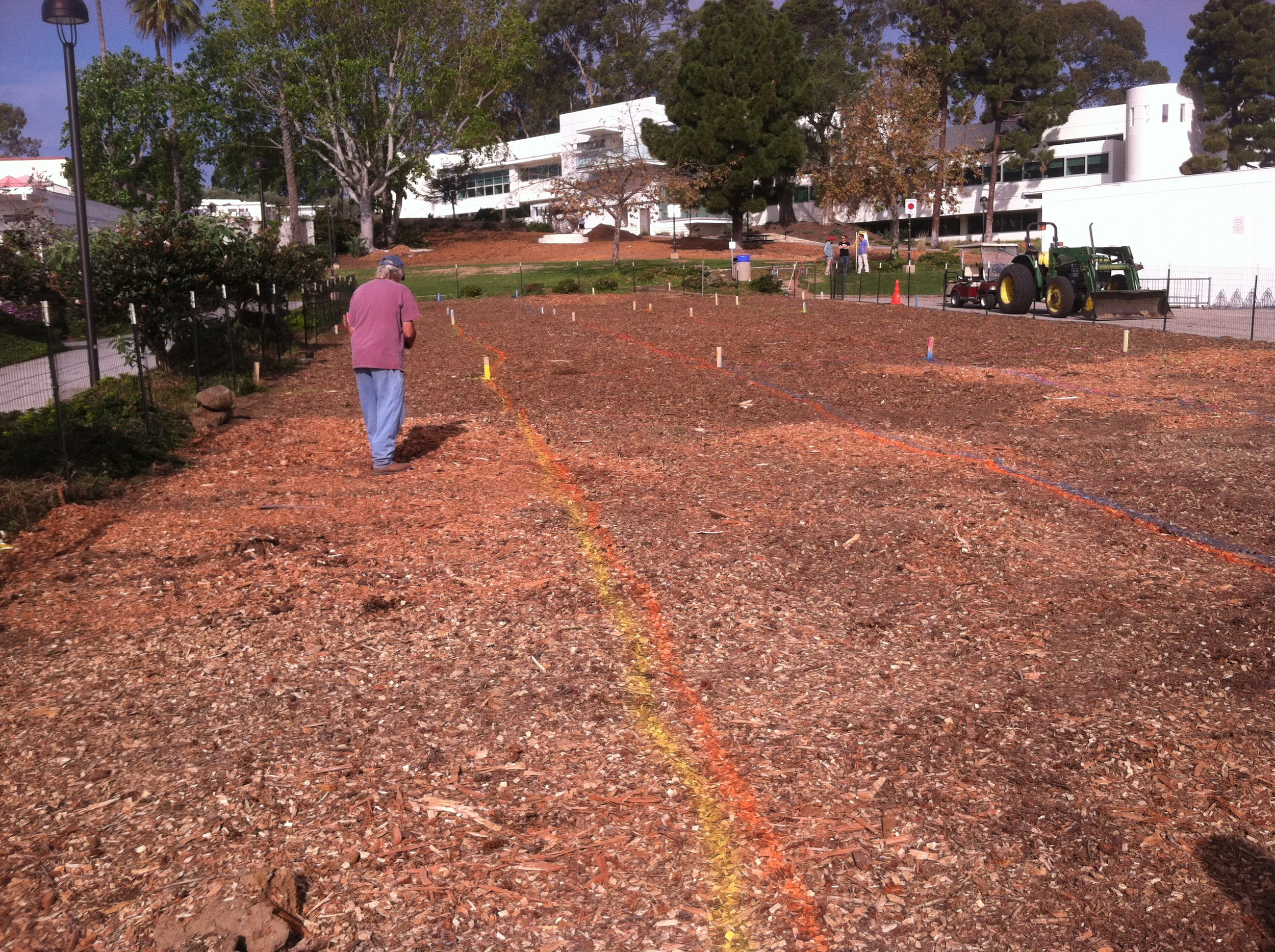 Portables are gone and bio remediation begins. See the Santa Barbara City College Channels article explaining how our students are going to rebuild this soil.    College starting ground project on Chumash heritage site