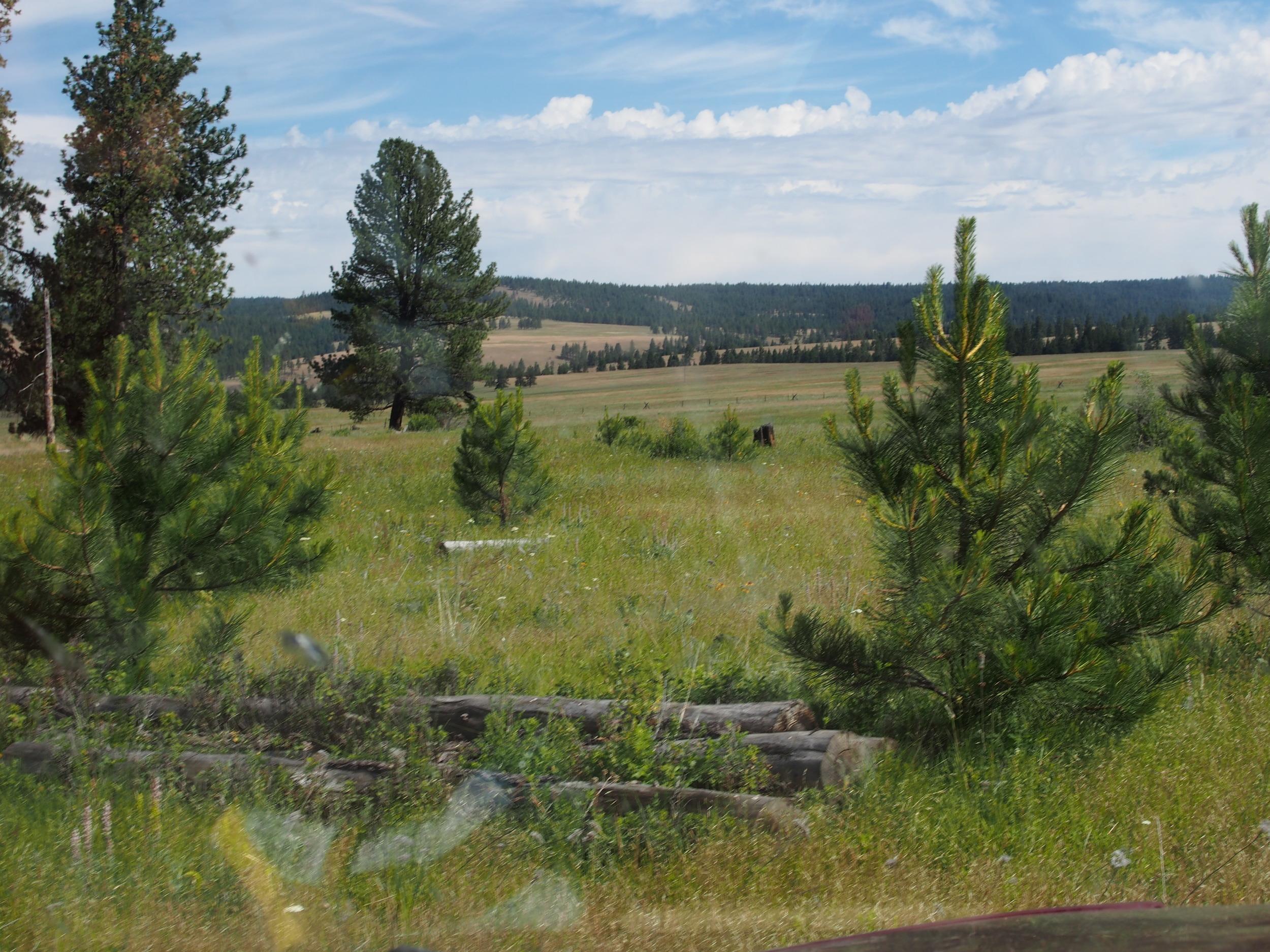 2015 June Oregon 606.jpg