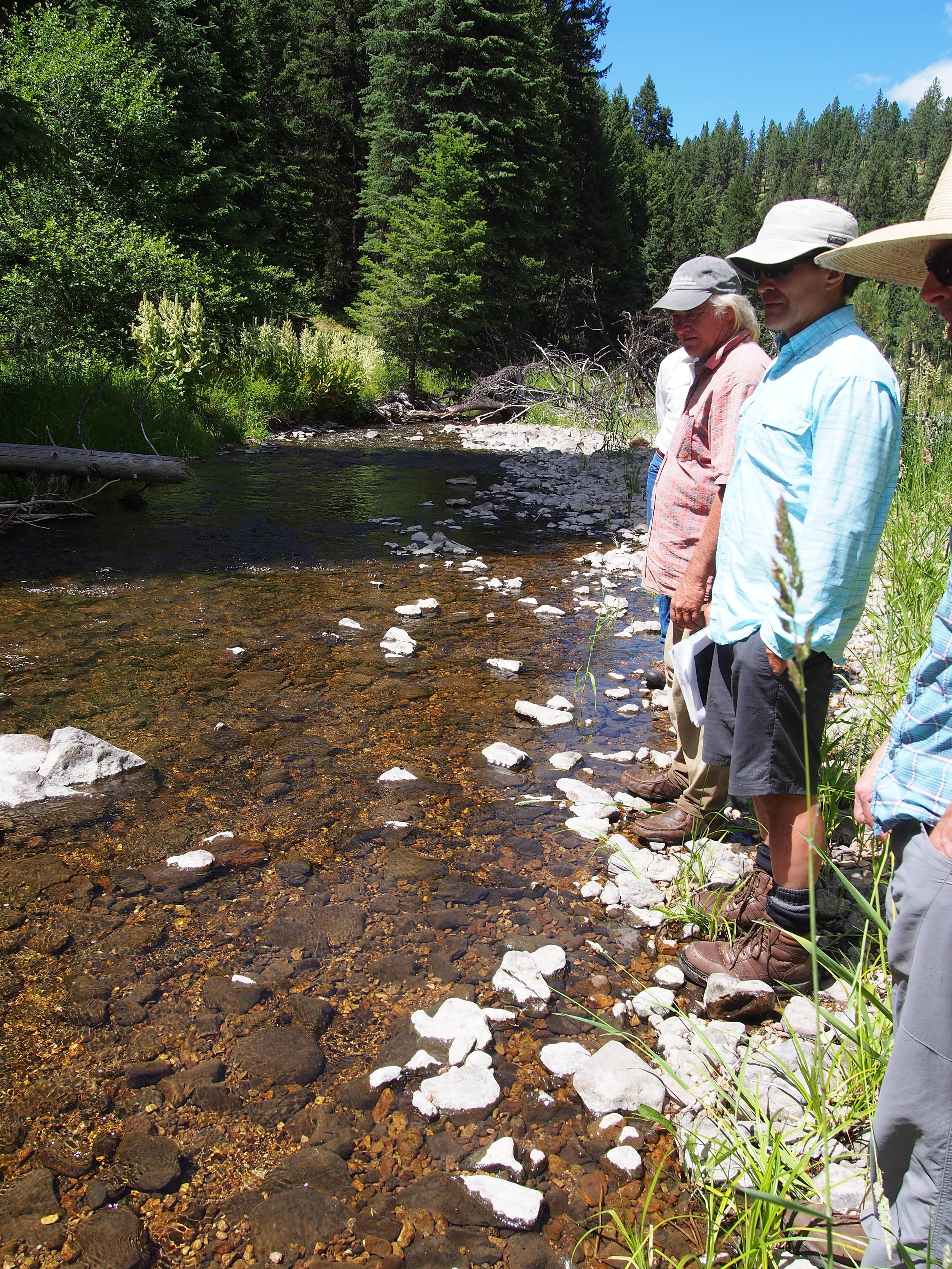 Don and grassland crew surveying creek.