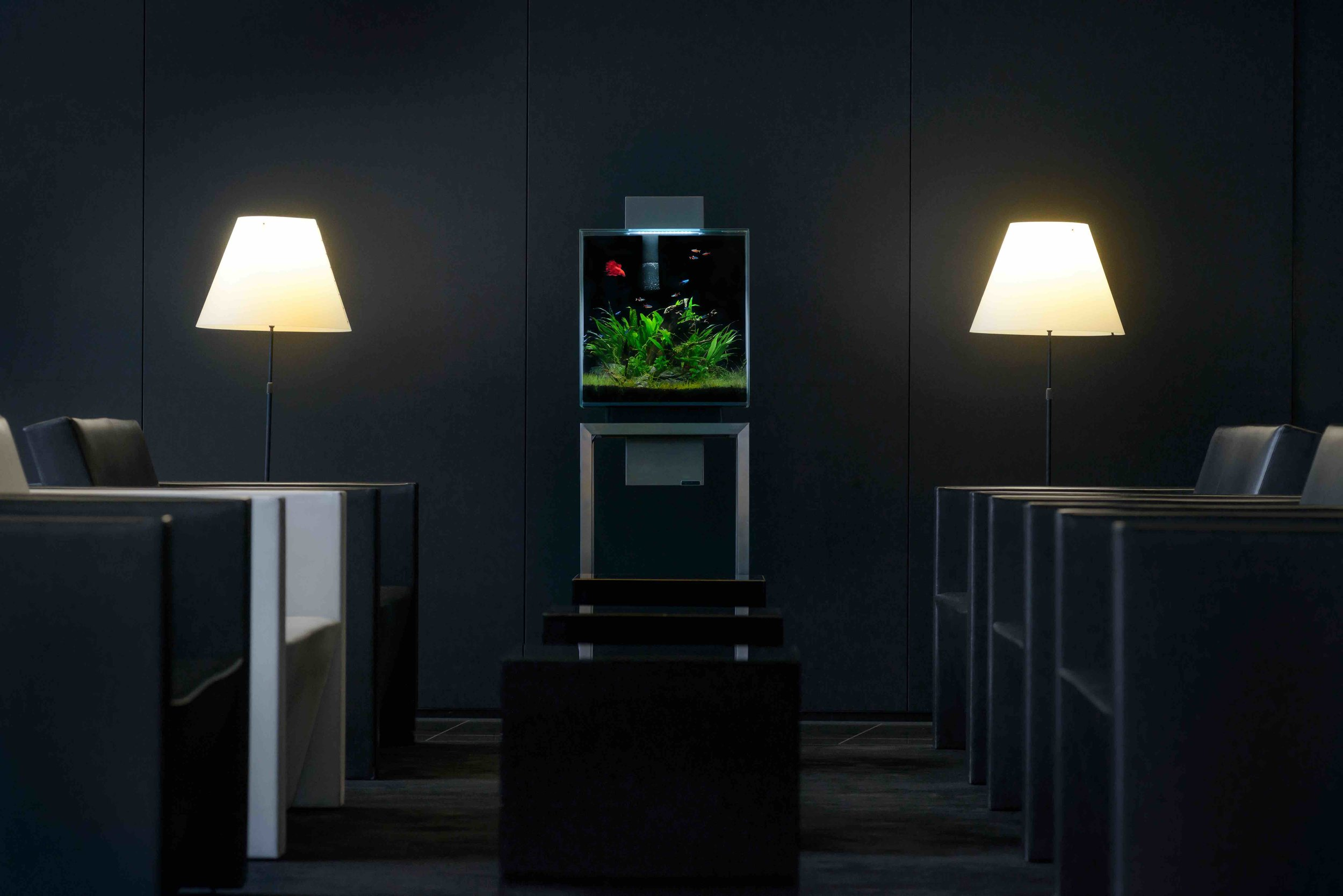 Aquarium Livecube Besprechungszimmer Business Office klein.jpg