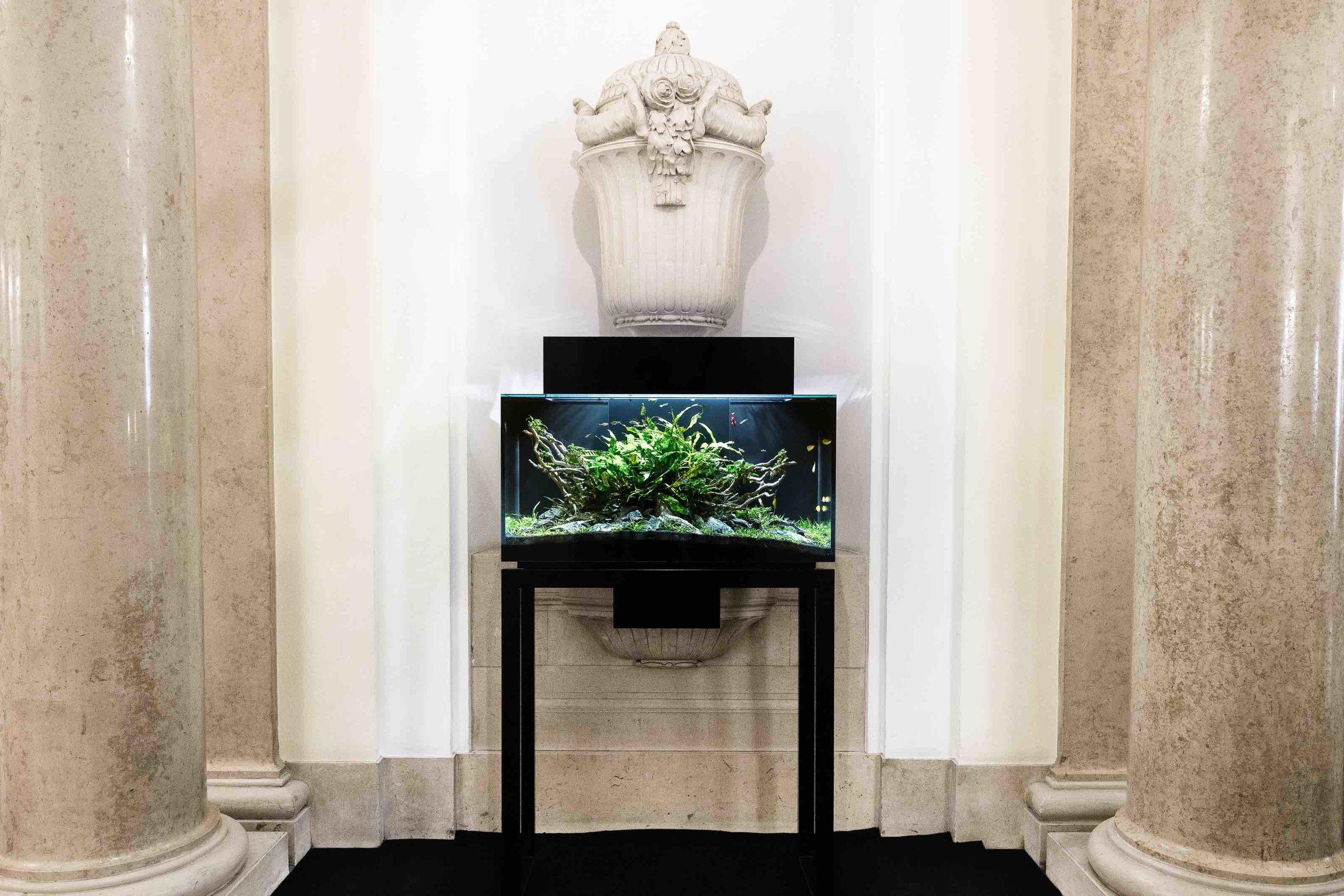 Livecube Sakana 160 Liter, auf Untergstell schwarz 75 cm Höhe