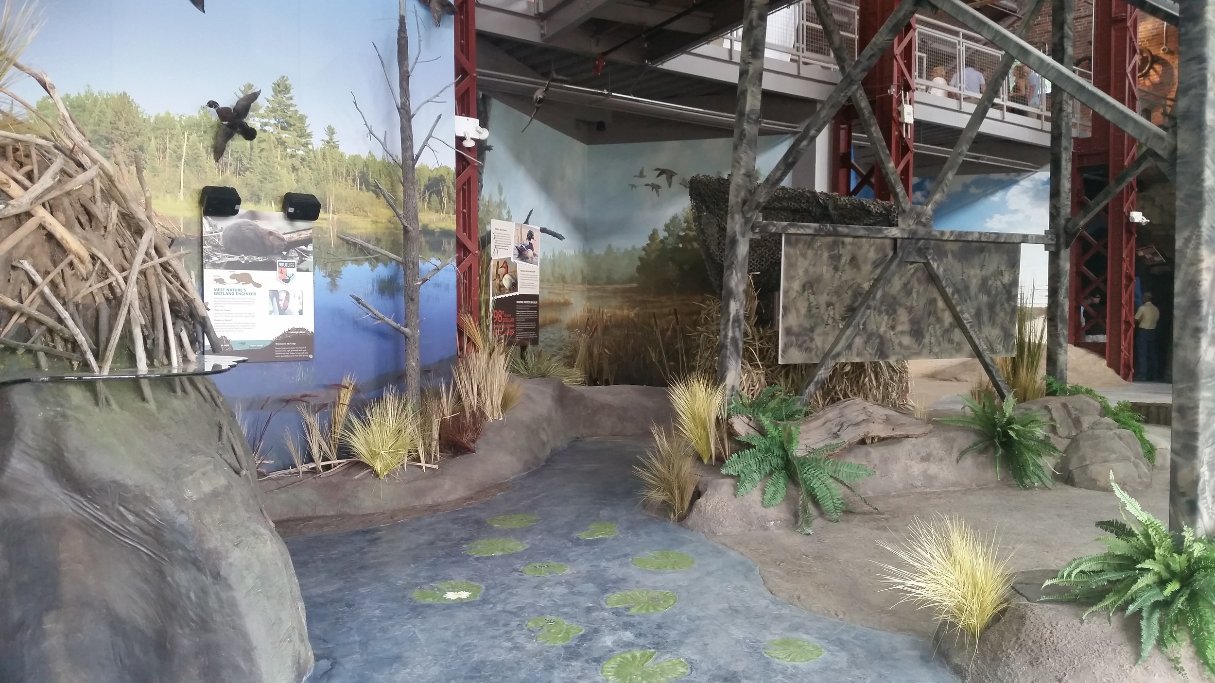wetland exhibit