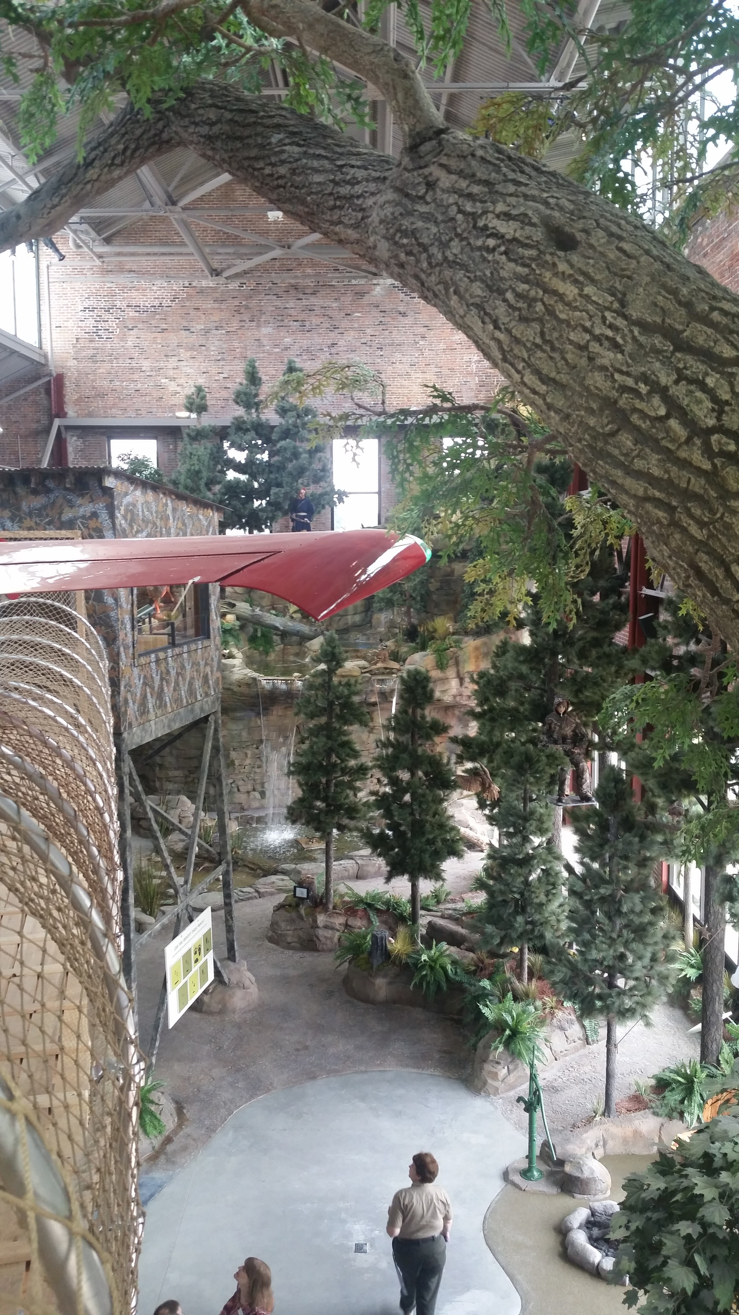 view from the 2nd story