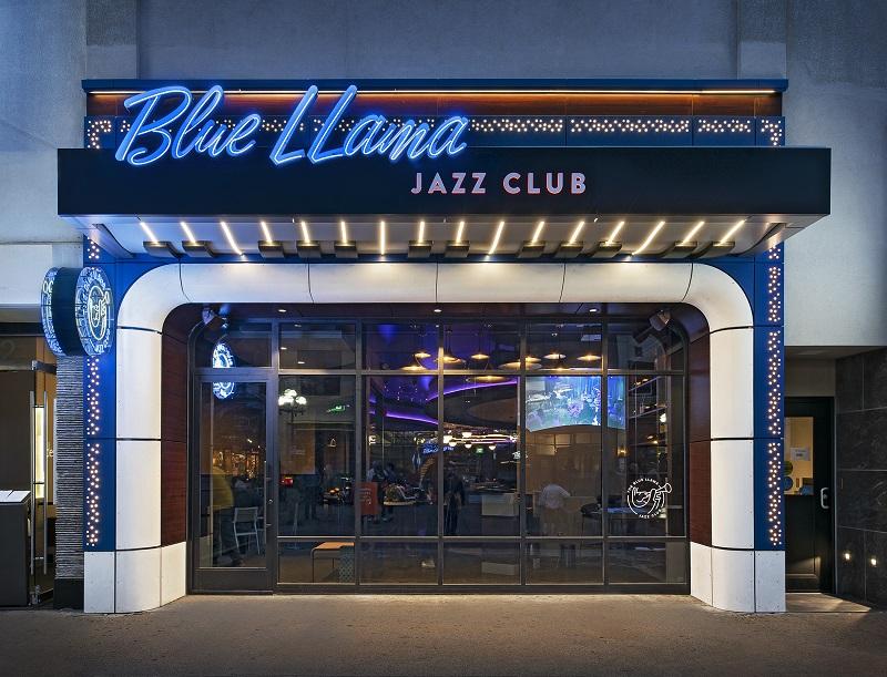 Blue LLama_19.jpg