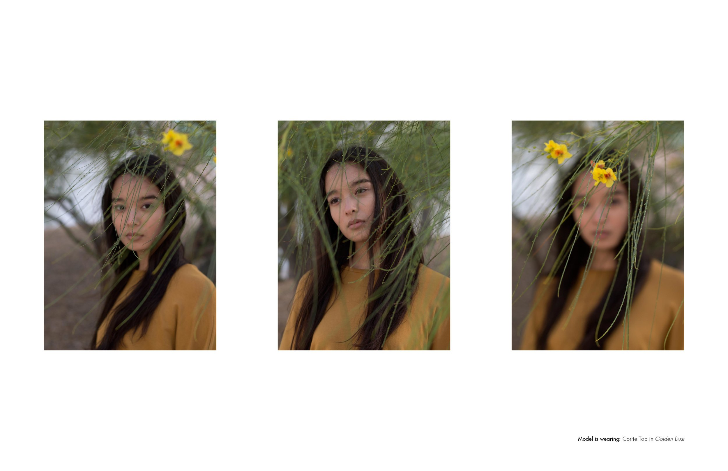 Corinne_Collection_FW17_Annie_Nguyen_Special_Project_Page16.jpg