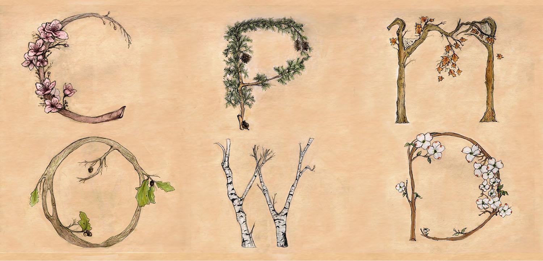 Tree Alphabet