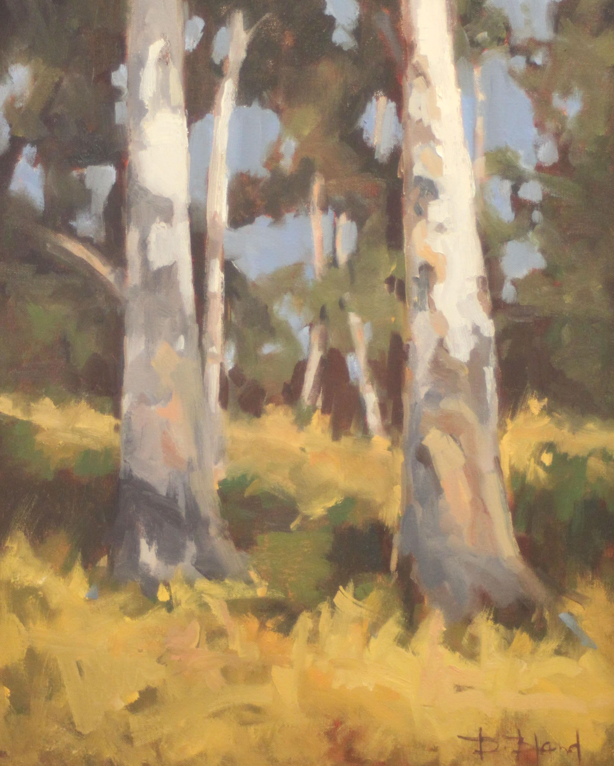 Donna Bland  Standing Tall  20X16  Oil