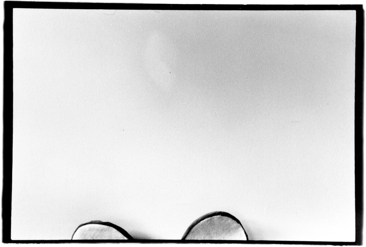 eden_swartz_photography_mouse project-2.jpg