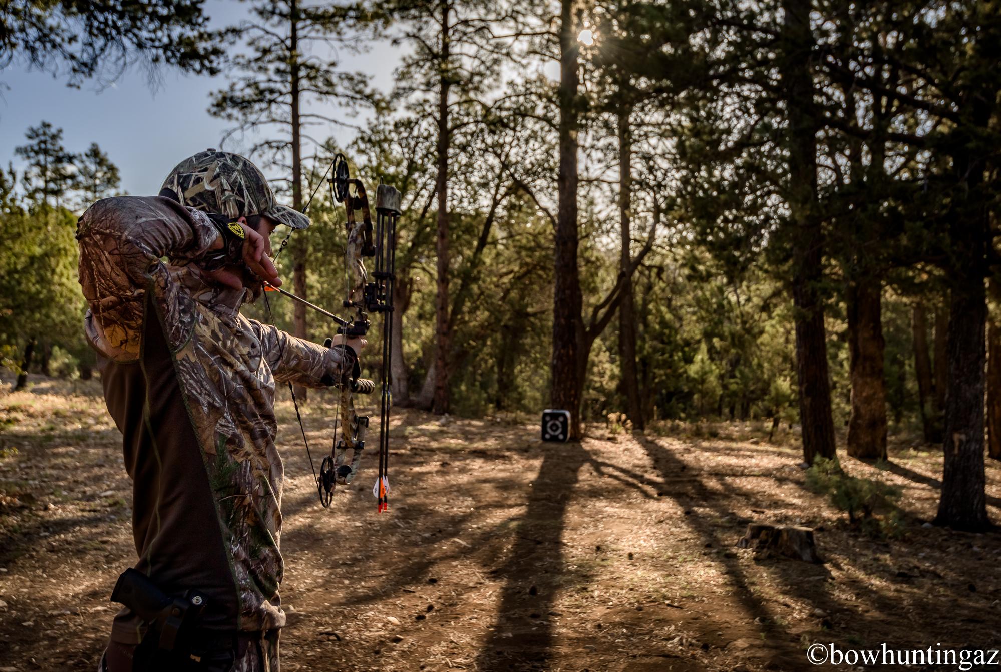 BowhuntingAZ, Arizona Bowhunter, Hunting, Arizona