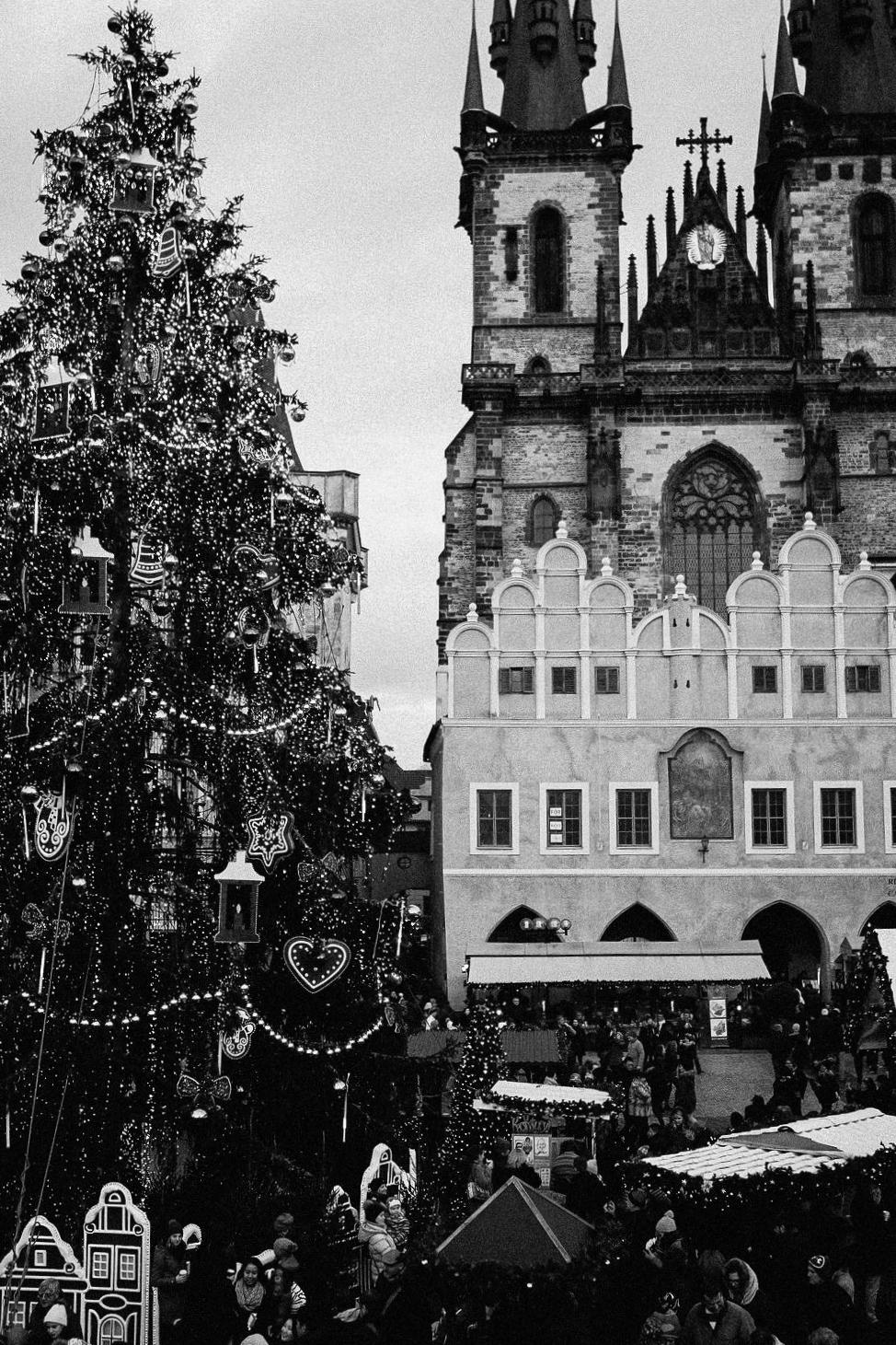Christmas-7.jpg