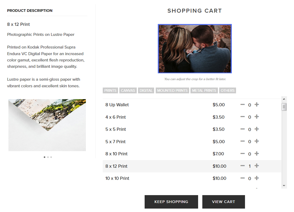 Purchasing prints and products through web gallery