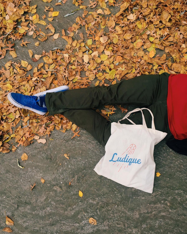 1 of 1 bag designed for Fall 2015