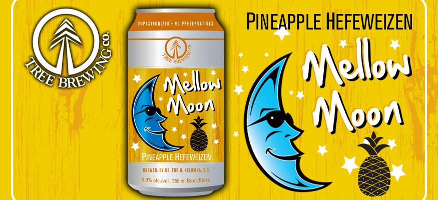 Mellow Moon Web Banner 1.jpg