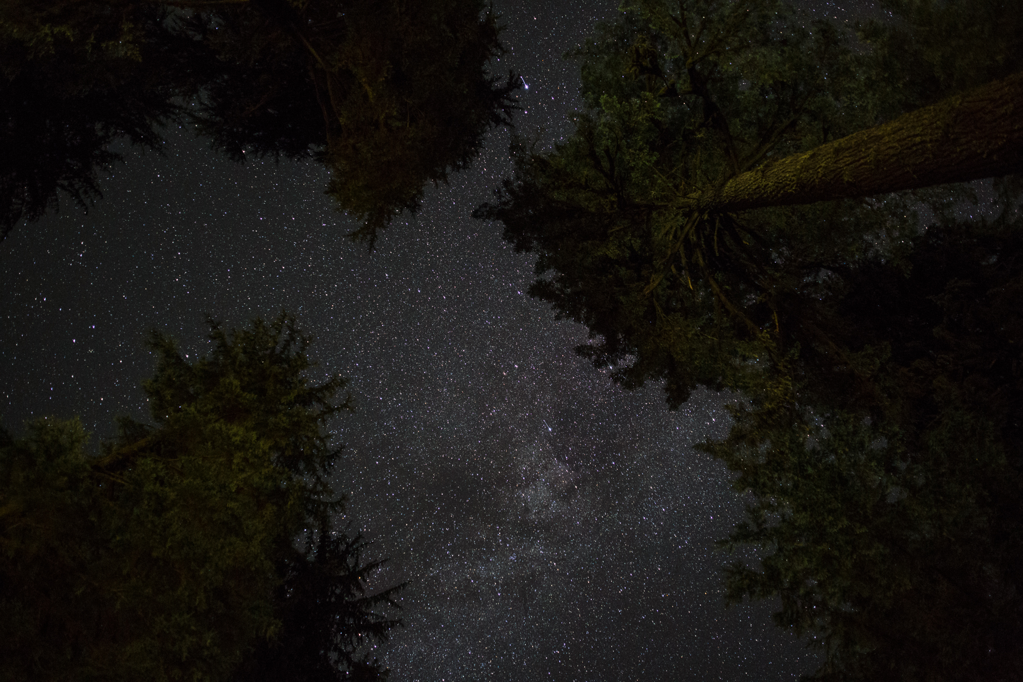 Oregon Night Sky