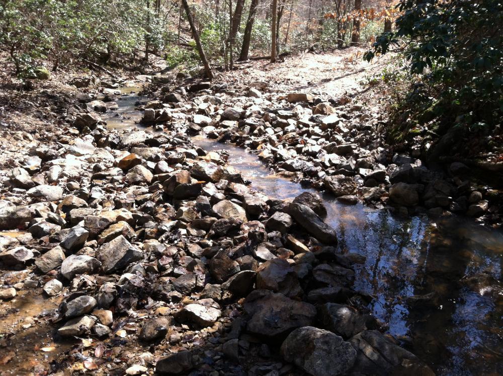 Creek Crosings 2.jpg
