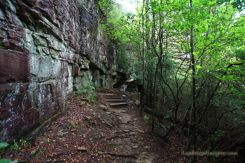 Greeter Falls Trail.jpg