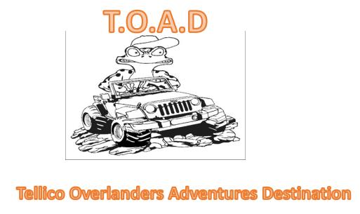 TOAD_logo