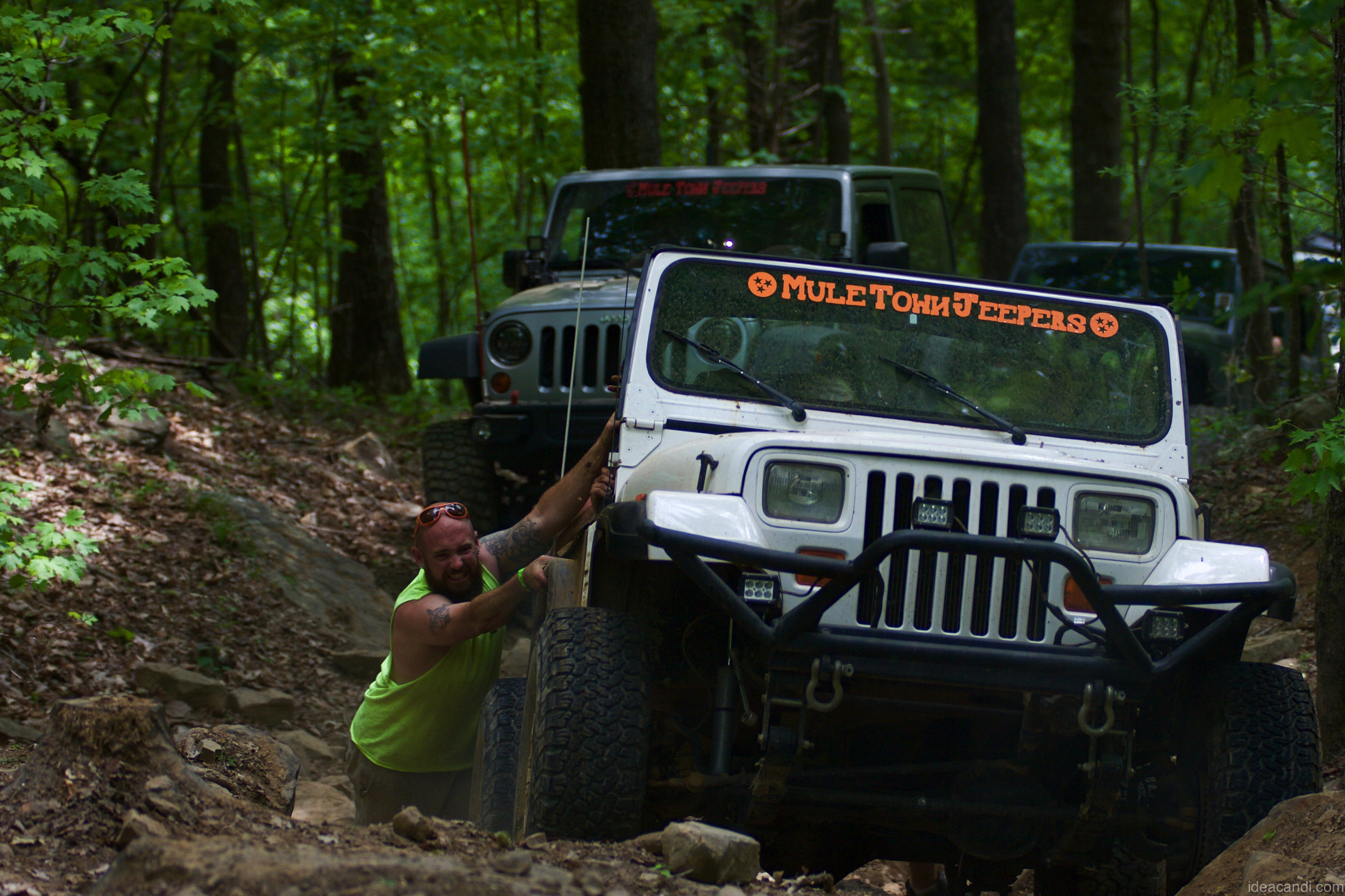 Trailfest 2016 - 21 of 32-imp.jpg