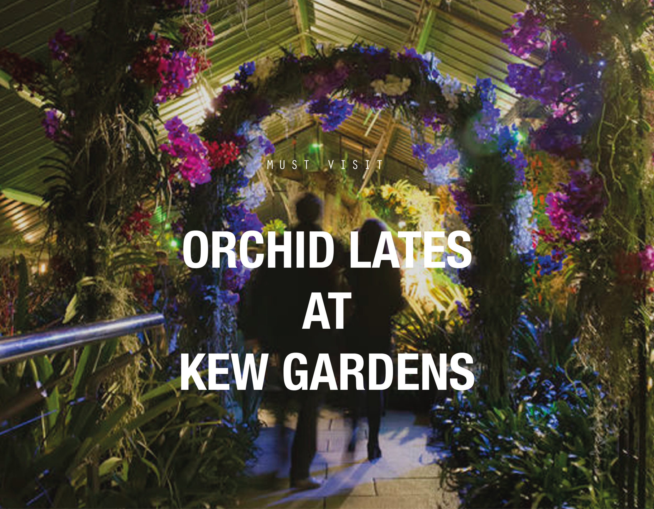ORCHID LATES_STYLE GUIDE CAPTION.png