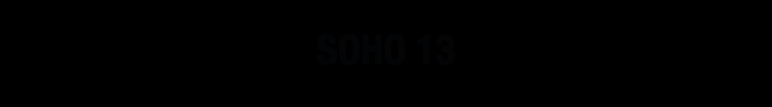 Portfolio Title_SOHO 13.png