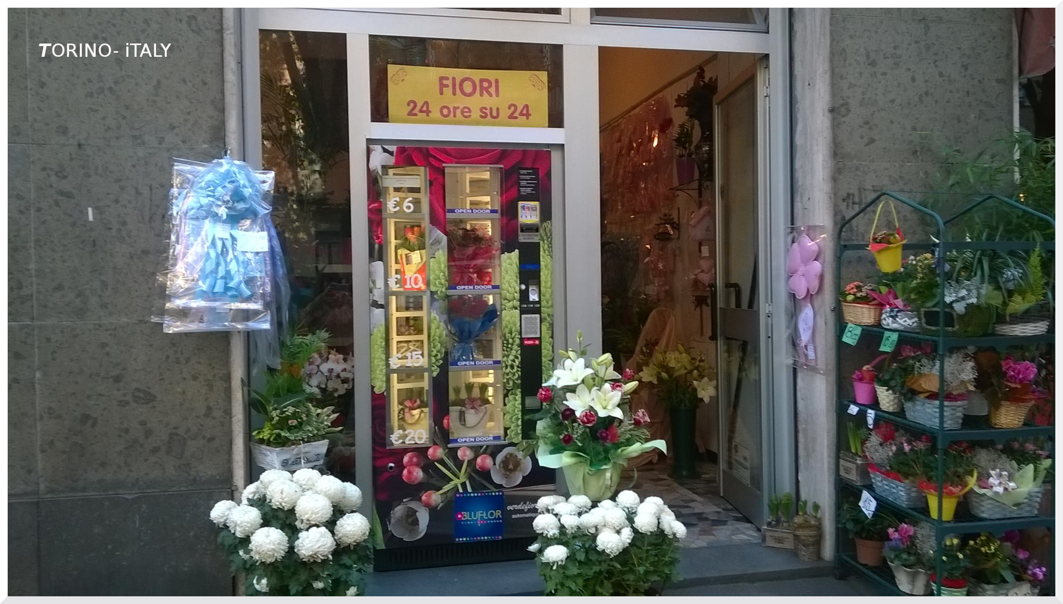 crisina fiori.jpg