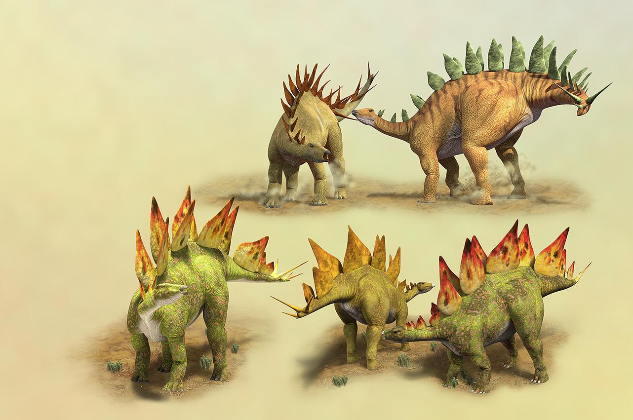 Stegosaurs.png