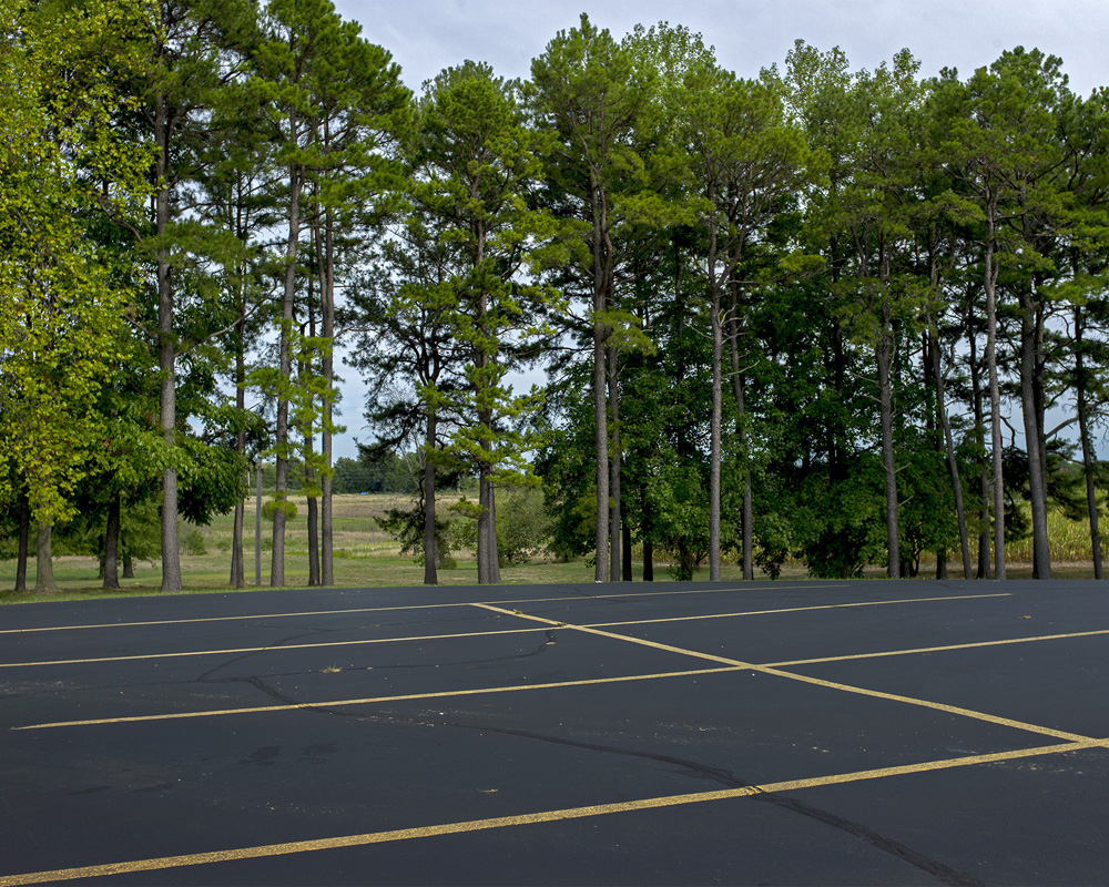 Parking Lot with Conifer Trees. Carbondale, Illinois