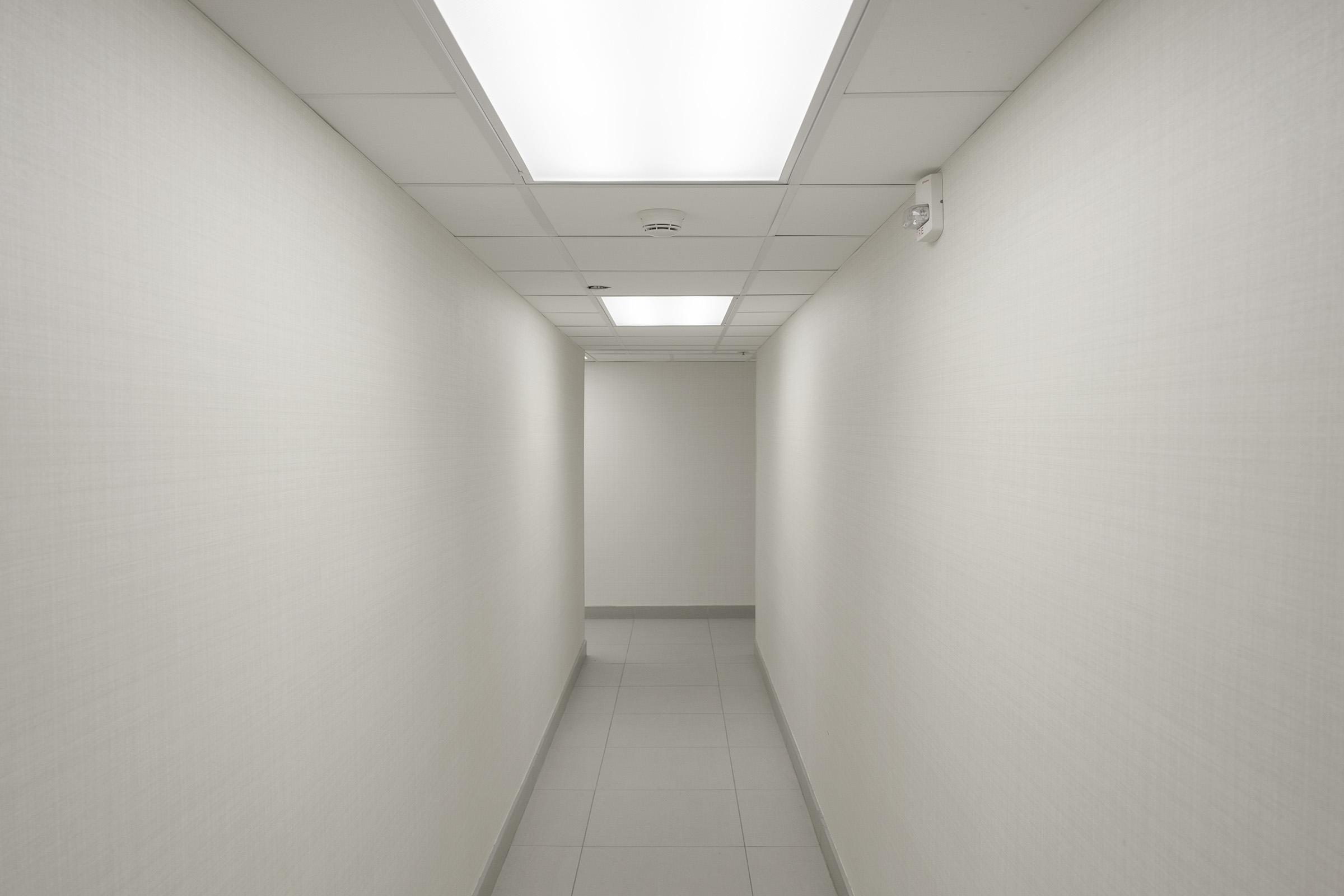 Blank Hall Low.jpg