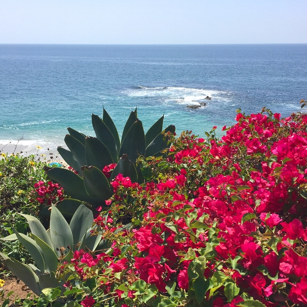 View of Laguna Beach at The Montage.