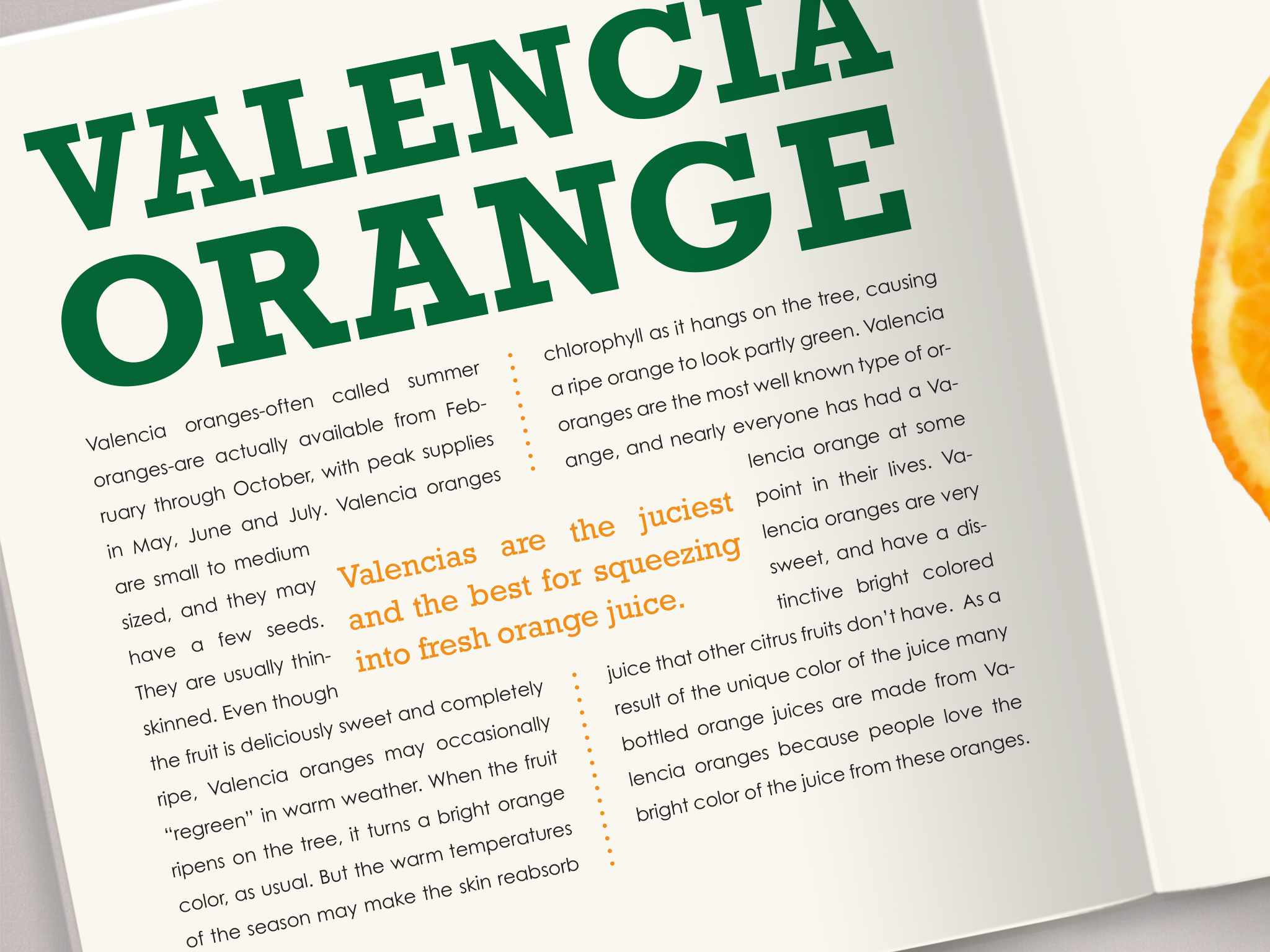 orange book detail 1.jpg