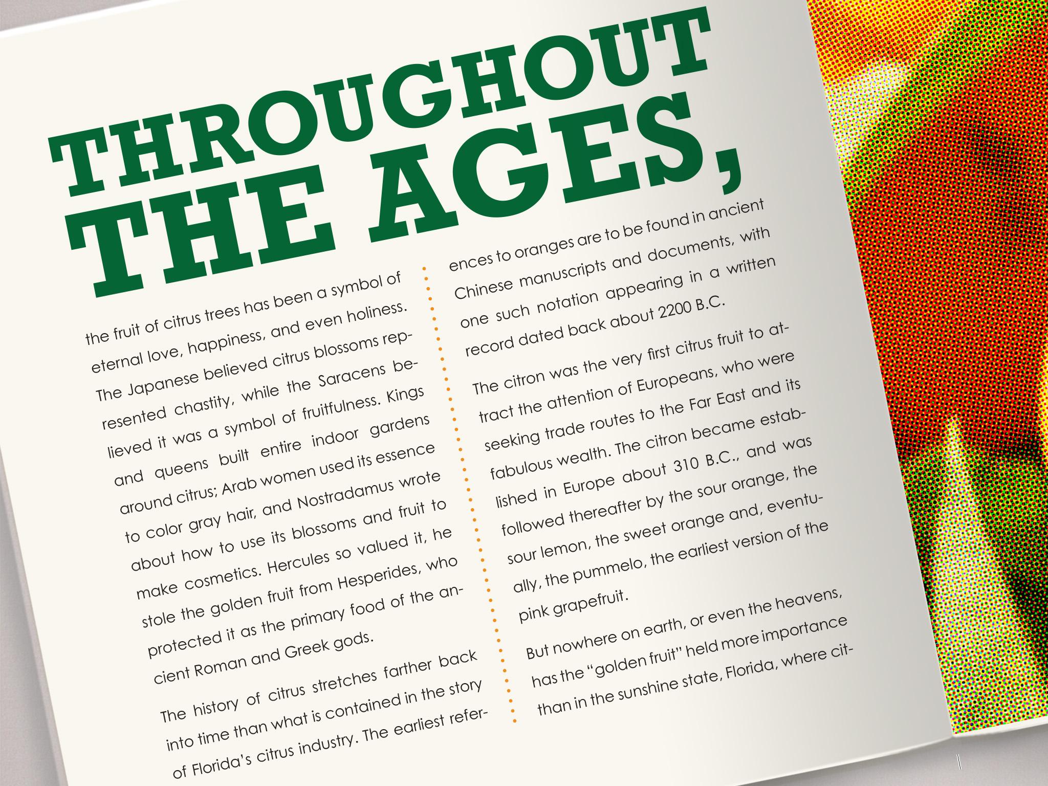 orange book detail 3.jpg