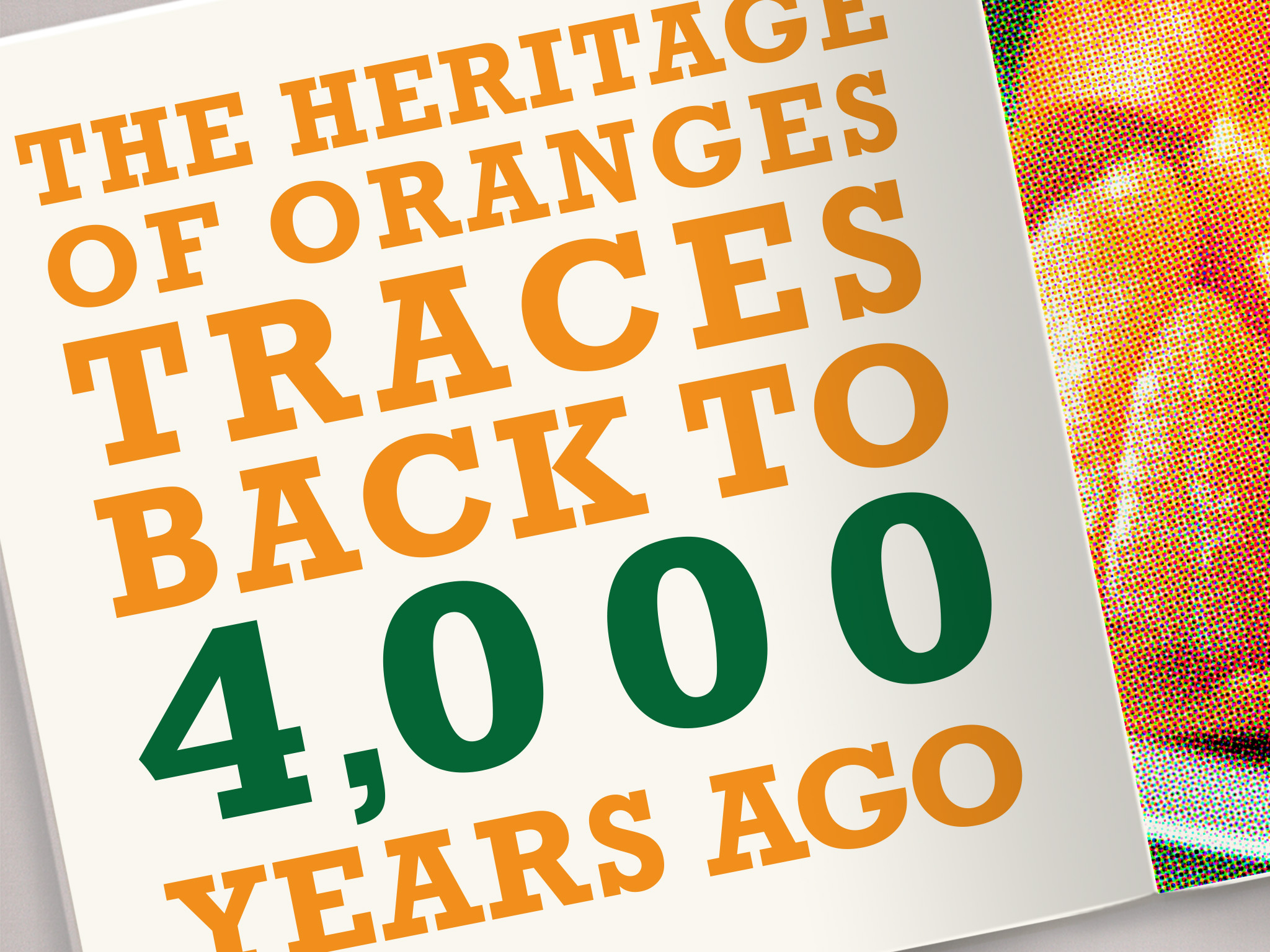 orange book detail 4.jpg